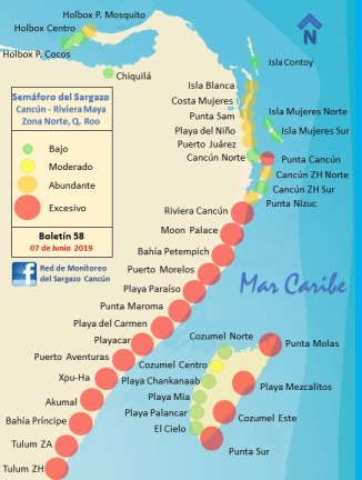 Mexican Caribbean Sargasso Map