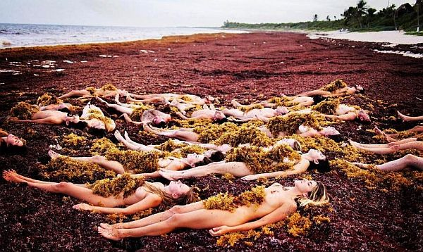 Spencer Tunick women in Sargassum
